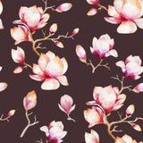 与木兰的水彩无缝的墙纸开花,叶子 向量例证