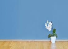 与木地板、花和蓝色墙壁的空的内部 免版税图库摄影
