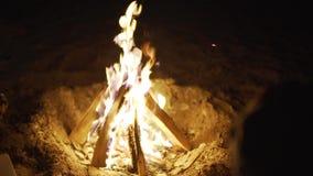 与木头的烧伤火在海滩阵营 特写镜头 股票录像