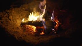 与木头的烧伤火在海滩阵营 特写镜头 影视素材