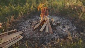 与木头的烧伤火在海滩阵营 影视素材