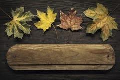 与木标志的秋天广告词的和题字和beauti 图库摄影