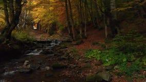 与木栏杆的楼梯 在山小河的清楚的水 股票视频