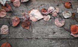 与木桌和红色秋季叶子的背景纹理 库存照片