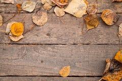 与木桌和黄色秋季叶子的背景纹理 库存照片