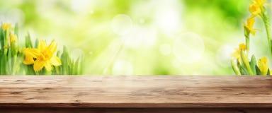 与木桌的光芒四射的绿色春天背景 库存图片