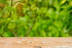 与木桌面的自然背景 库存照片