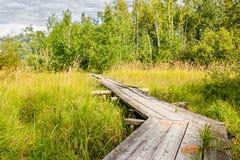 与木桥的夏天风景 免版税库存图片