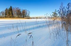 与木桥的瑞典湖海岸 库存照片