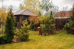 与木棚子和针叶树的晚秋天庭院视图 免版税库存照片