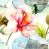 与木槿花的无缝的样式 库存图片