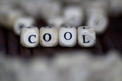 与木立方体的凉快的词 免版税库存图片