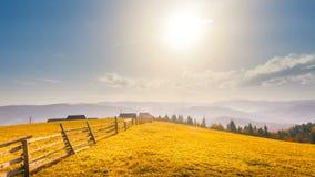 与木篱芭的秋天黄色草甸领域 影视素材