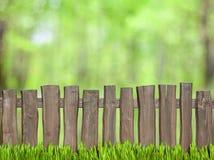 与木篱芭的绿色背景 免版税库存照片