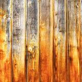与木纹理的明亮的背景的你的任一个设计 库存照片