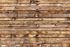 与木纹理的明亮的背景 免版税库存照片