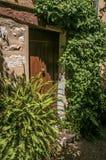 与木门和植物的胡同视图圣徒保罗deVence的 库存图片