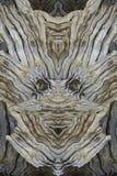 与木面孔的现代印刷品 在灰色的拼贴画,棕色, biege 树面孔 图库摄影