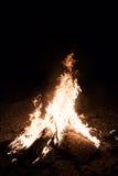 与木头的烧伤火在海滩阵营 免版税图库摄影