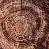 与木年轮的布朗自然木纹理背景 免版税图库摄影