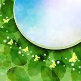 与本质绿色l的背景 免版税图库摄影