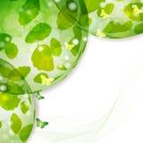 与本质绿色l的背景 库存照片