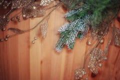 与杉木云杉冷杉的圣诞节背景分支与发光 免版税库存照片