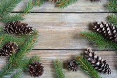 与杉木分支和锥体的圣诞节框架 免版税库存图片