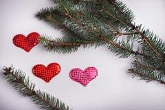 与杉木和三心脏分支的木白色背景  免版税库存图片