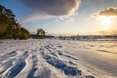 与杉木和积雪的领域在日落,俄罗斯,乌拉尔, 3月的冬天风景 免版税图库摄影