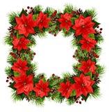 与杉木枝杈、锥体、莓果和poins的圣诞节方形的框架 免版税图库摄影