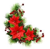 与杉木枝杈、锥体、莓果和ponset的圣诞节安排 免版税图库摄影