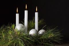 与杉木的三个白色蜡烛 免版税库存照片