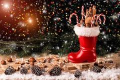 与杉木锥体和坚果的圣诞节构成 免版税图库摄影