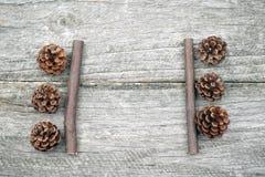 与杉木锥体和木棍子的静物画构成 免版税库存照片