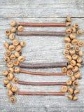 与杉木锥体和木棍子的静物画构成 图库摄影