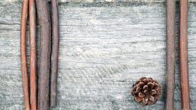 与杉木锥体和木棍子的静物画构成 免版税图库摄影
