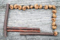 与杉木锥体和木棍子的静物画构成 库存照片