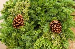 与杉木锥体和雪松的常青花圈 免版税库存图片