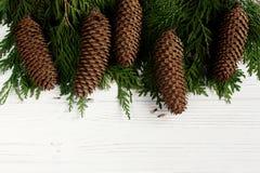与杉木锥体框架的绿色树枝在时髦的白色rusti 免版税库存图片