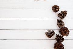 与杉木锥体的圣诞节土气背景在白色木头 免版税库存图片