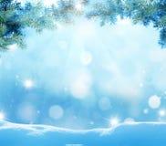 与杉树分支的圣诞节背景 免版税库存照片
