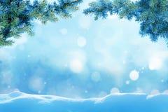 与杉树分支的圣诞节背景 库存图片