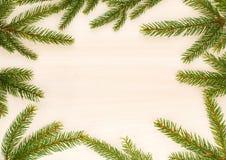 与杉树分支的圣诞节背景 免版税图库摄影