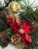 与杉树分支,杉木锥体,在雪的红色花的圣诞节背景 免版税库存图片