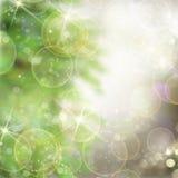 与杉树和闪烁的圣诞节背景 免版税库存照片