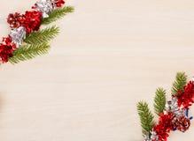 与杉树的圣诞节背景分支和诗歌选 图库摄影