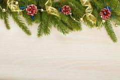 与杉树的圣诞节背景分支,锥体和丝带 免版税图库摄影