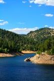 与杉树的山水库在一个晴天 库存图片