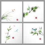 与杉树,鸟,蝴蝶的背景 免版税库存图片